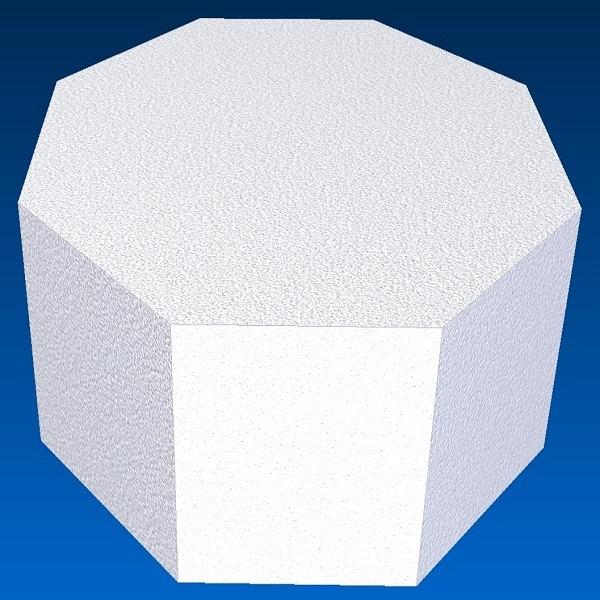 octagon dummy